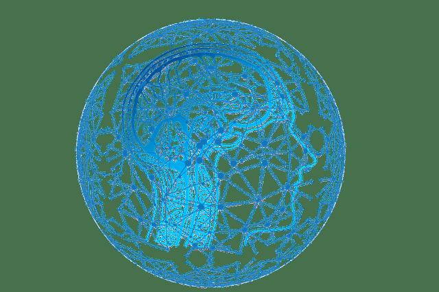 How To Increase Neurogenesis