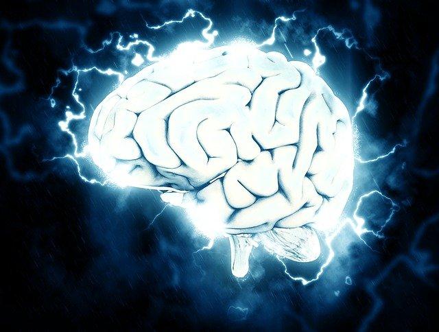 Does walking increase neurogenesis?
