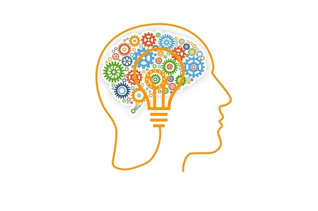 What are some examples of metacognition?
