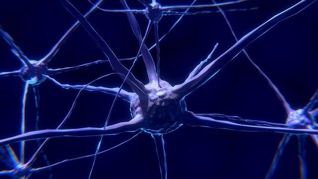 How do you increase neurogenesis naturally?